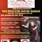 Sensei Lucas hosts Stick Seminar